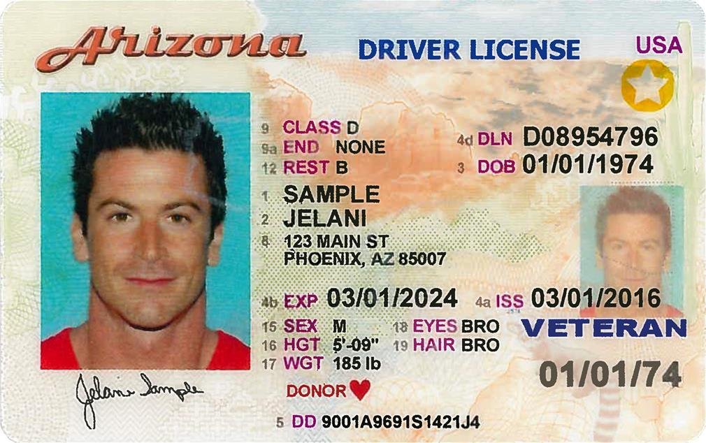 az-voluntary-travel-id